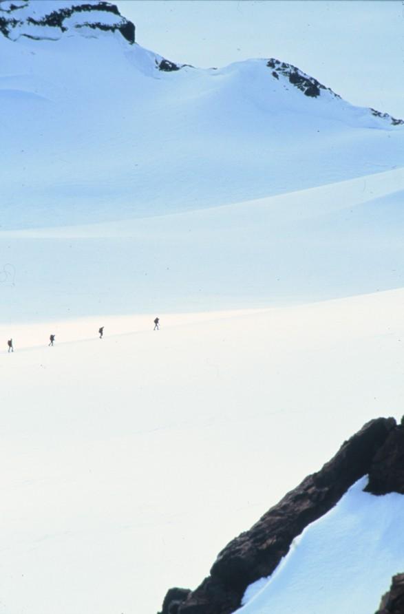 Kohler Glacier.jpg