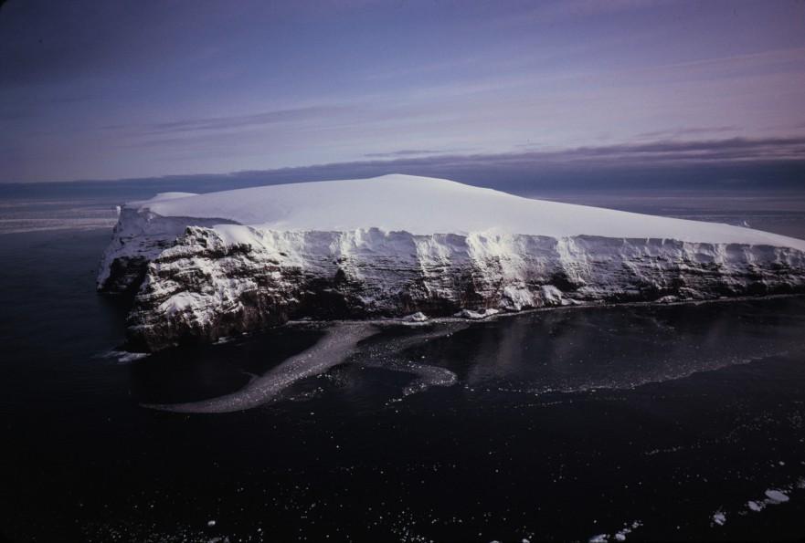 Borradaile Island - Balleny.jpg