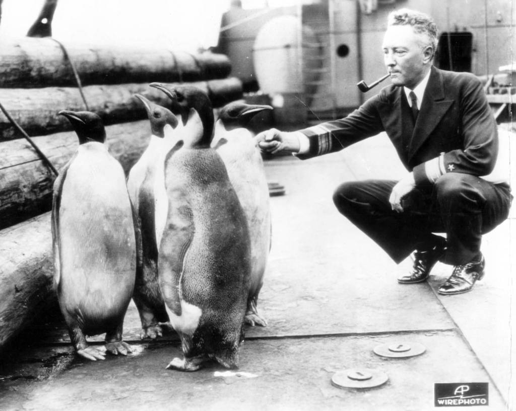 Adm-RichardByrd-penguins.jpg