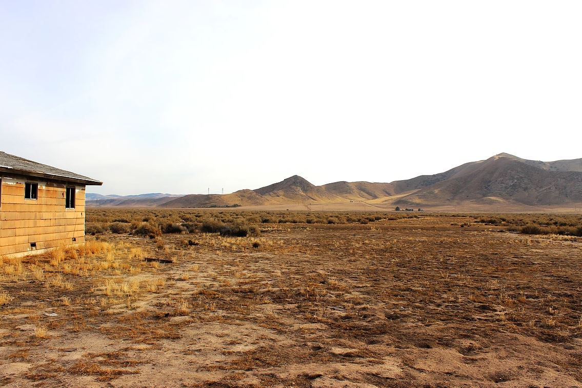 Calsahara-hoov.jpg