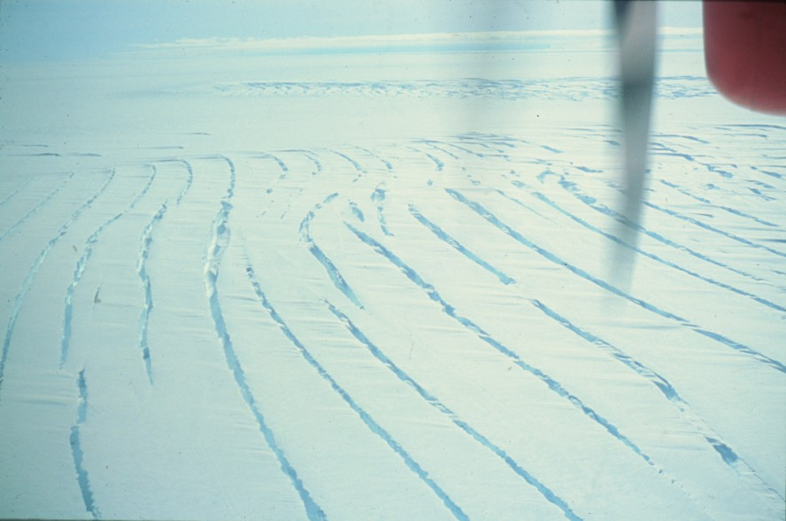 Smithe Glacier Crevace.jpg